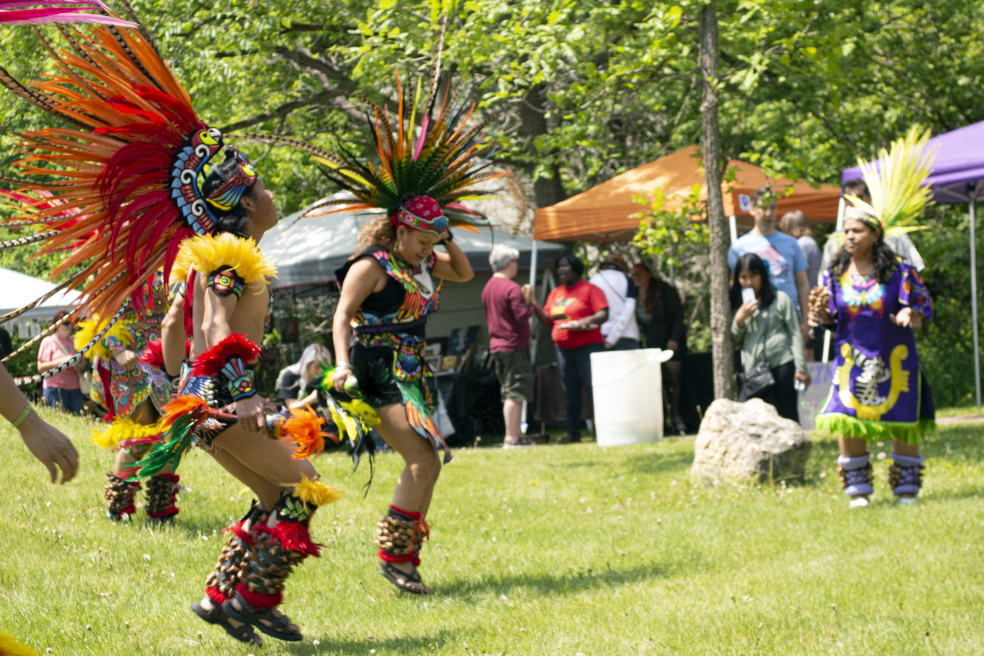 Art in the Hollow celebrates 10th anniversary